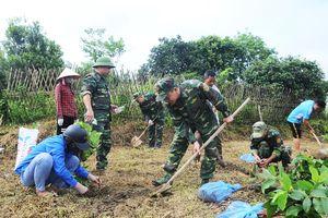 Đồn Biên phòng Pò Hèn và Báo Thanh niên hỗ trợ cây giống cho nông dân
