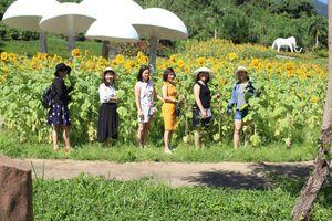 Nhiều trải nghiệm thú vị tại Yangbay