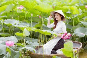 Mặc gì chụp với hoa sen để có bức ảnh đẹp nhất?