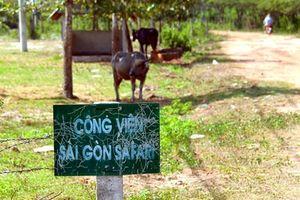 Vì sao công viên Sài Gòn Safari bị 'treo' tới 14 năm?