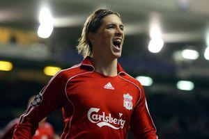Những cột mốc đáng nhớ trong sự nghiệp của Fernando Torres