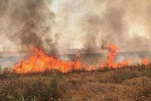 Tình hình Syria mới nhất ngày 22/6: Khủng bố IS nhận trách nhiệm các vụ hỏa hoạn ở biên giới