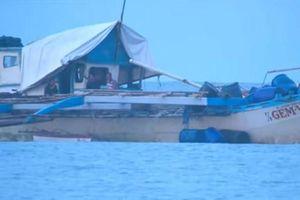 Học giả Philippines nghi ngờ dân quân biển Trung Quốc đâm chìm tàu cá ở Biển Đông