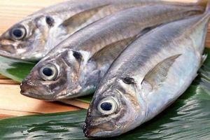 Chuyên gia dinh dưỡng lý giải vì sao ăn cá biển, tốt nhất đừng ham... cá to