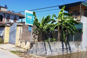 Thái Bình: Khởi tố chủ hiệu thuốc nghi dâm ô với bé gái 15 tuổi