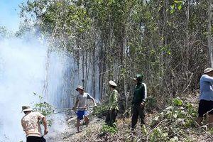 15 ha rừng tại núi Xà Riêng bị cháy rụi do người dân đốt rẫy