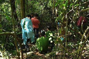 Phát hiện thi thể đàn ông bị phân hủy ở đèo Bảo Lộc