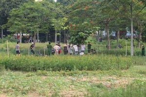 Thanh Hóa: Công an điều tra cái chết bất thường của người đàn ông trong công viên