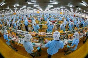 Nâng cao chất lượng sản phẩm mới có thể cạnh tranh thị trường quốc tế