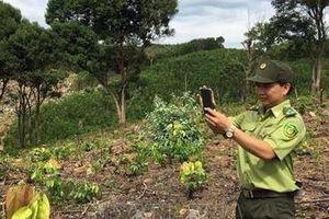 Ứng dụng công nghệ trong quản lý, bảo vệ rừng