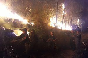 Gần 1.000 người căng mình chữa cháy rừng thông ở Nghệ An