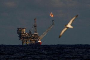 Biến động giá dầu trước giờ Mỹ gia tăng trừng phạt Iran