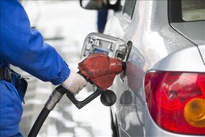 Giá dầu châu Á tăng do căng thẳng Mỹ - Iran