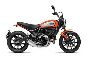 Ngắm môtô Ducati 803cc, giá gần 340 triệu tại Việt Nam