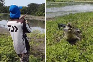 CLIP: Cần thủ 'chạy mất dép' vì bị cá sấu khổng lồ tranh chiến lợi phẩm