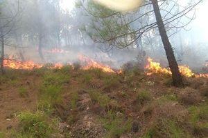 Hà Tĩnh: Cháy rừng thông, hàng trăm người tham gia dập lửa