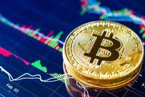 Bitcoin thiết lập mức kỷ lục 11.000 USD Mỹ, đồng tiền ảo này có sống lại thời hoàng kim?