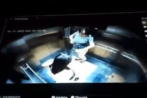 Luật sư: Khách 'tè bậy' trong thang máy mà phạt chủ nhà 2 triệu đồng là sai