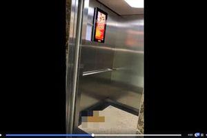 Xác định được người đại tiện ra thang máy ở chung cư Capital Garden