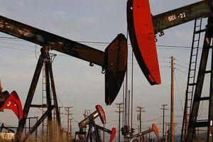 Giá xăng dầu hôm nay 25/6 đồng loạt giảm nhẹ