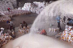Vì sao xuất khẩu gạo trở nên 'ảm đạm'?