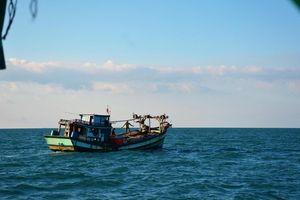 Hai tàu cá của ngư dân Bình Định gặp nạn giữa biển