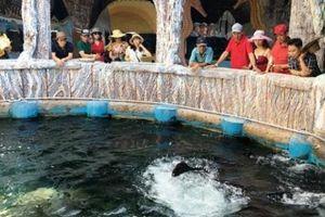 Đến Nha Trang đừng quên ghé đảo Hòn Sỏi