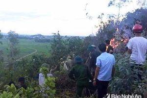 Khống chế vụ cháy rừng bạch đàn ở Quỳnh Lưu