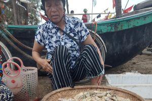 Cần tổng kiểm tra việc bán đồ hải sản kém chất lượng ở Sầm Sơn