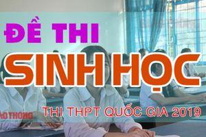 Đề thi môn Sinh học THPT quốc gia 2019 có đáp án chính xác