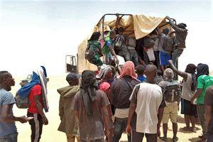 Gần 20.000 người di cư được cứu sống ở khu vực sa mạc thuộc Niger