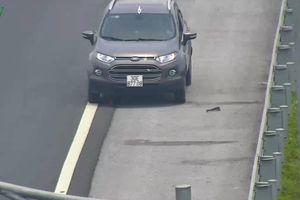 Ô tô đi lùi trên cao tốc: Phạt nặng, nhiều tài xế vẫn vi phạm