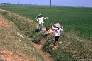 Hình ảnh khó quên về nông thôn Hà Nội năm 1991