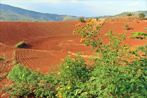 Dấu tích núi lửa, giá trị địa chất vô giá trên đất Tây Nguyên