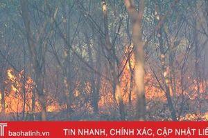 Hà Tĩnh ứng trực 24/24h các khu vực rừng trọng điểm dễ cháy