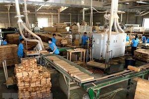 Thúc đẩy DN chế biến gỗ và thủy sản thực hành trách nhiệm xã hội