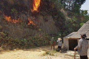 Hà Tĩnh: Đang cháy rừng diện rộng, di dời người dân ra khỏi vùng nguy hiểm