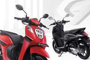 Xe tay ga Genio giá 28 triệu đồng của Honda có gì đặc biệt?