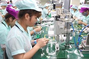 Doanh nghiệp Hàn Quốc 'tiến thoái lưỡng nan' vì quảng bá của Phú Thọ