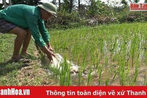 Bảo đảm nguồn nước phục vụ công tác chống hạn
