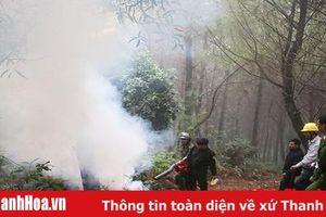 Xã Hoằng Yến: Nhận diện nguy cơ, chủ động phòng tránh các vụ cháy rừng