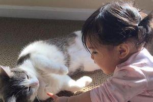 Tiết lộ cực phấn kích với người hay nói chuyện với chó, mèo