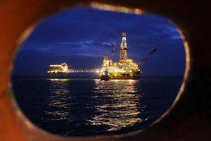 Giá dầu tăng nhẹ khi nhà đầu tư lạc quan hơn