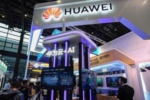 Huawei và các đối tác Mỹ tìm cách đối phó lệnh cấm