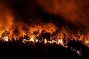 Cháy ngùn ngụt ở rừng phòng hộ