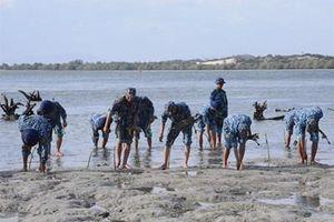 Tuổi trẻ Vùng 4 Hải quân trồng 2.000 cây đước và làm sạch biển