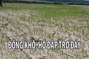 Hạn đến mức 'đồng khô, lúa cháy, hồ đập trơ đáy' ở Quảng Trị