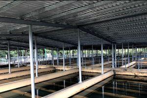 Đà Nẵng tạm ngưng cấp nước sinh hoạt trong ngày 1.7