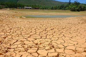 Hồ chứa nước 'phơi bụng', ruộng đồng bỏ hoang vì nắng nóng kéo dài