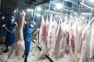 Trung Quốc 'ùn ùn' nhập thịt lợn